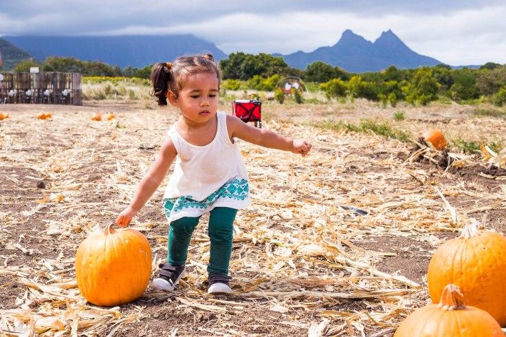 PumpkinPatch1-61