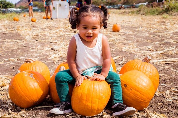 PumpkinPatch1-68