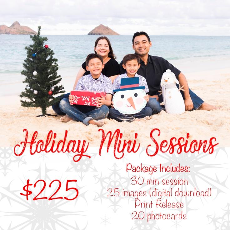 HolidaySpecial2017